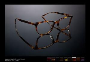 Portland_glasses_barton_perreira_cassady_eyeglasses_eye_department