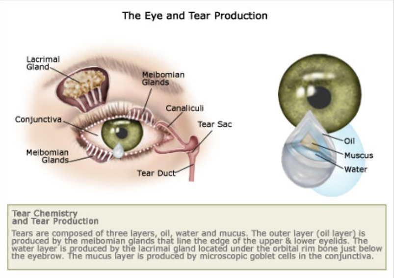 dry-eyes-tear-production-symptoms-chronic-dry-eyes